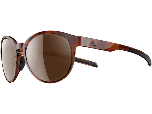 adidas Beyonder Bril Dames, brown havanna/brown